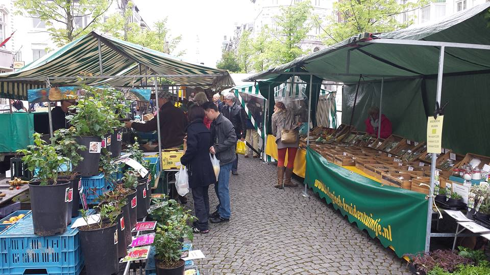 Biologische markt maastricht awkward duckling - Maastricht mobel ...