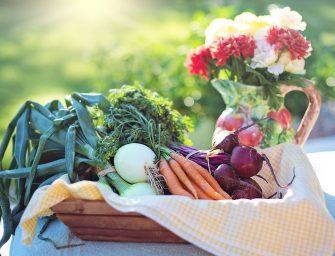 Lokaal en vers eten van de boer