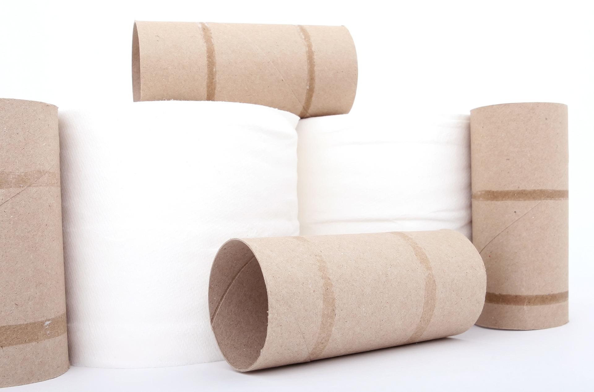 10 dingen om te doen met lege wc-rollen