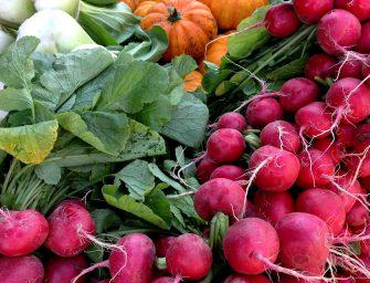 De (biologische) boerenmarkten in Nederland