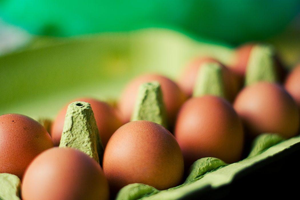 10x wat te doen met lege eierdozen