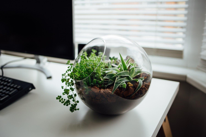 10x wat te doen met lege glazen potten