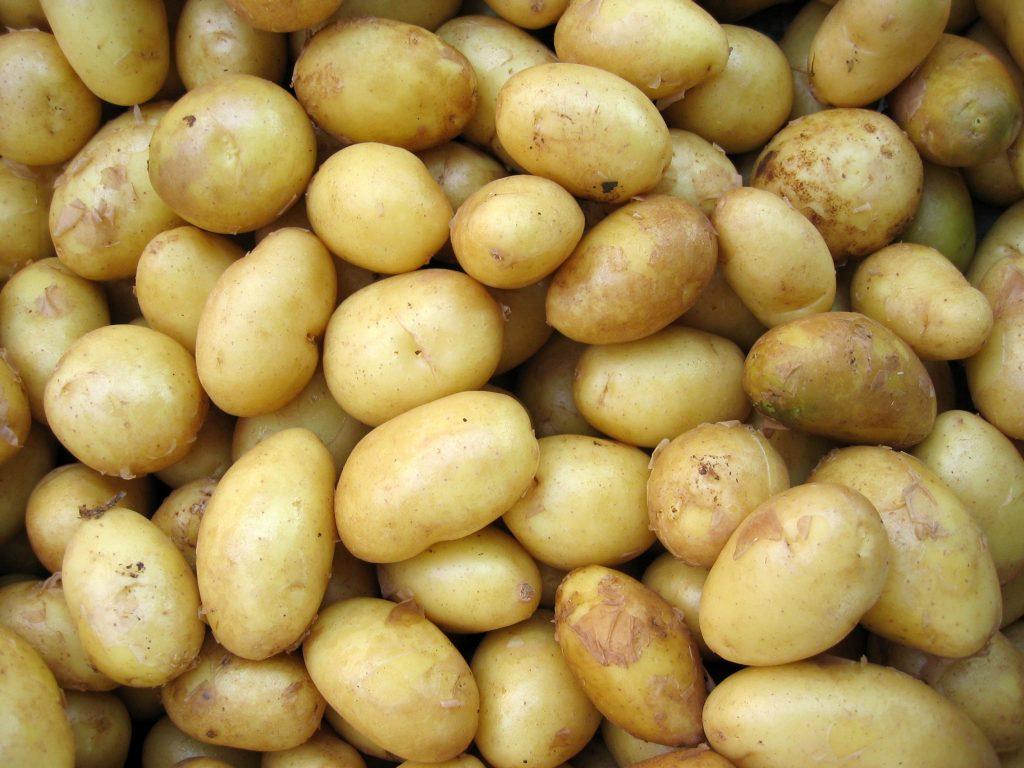 mijn 5 favoriete recepten met aardappel