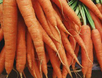 Mijn 5 favoriete recepten met wortel