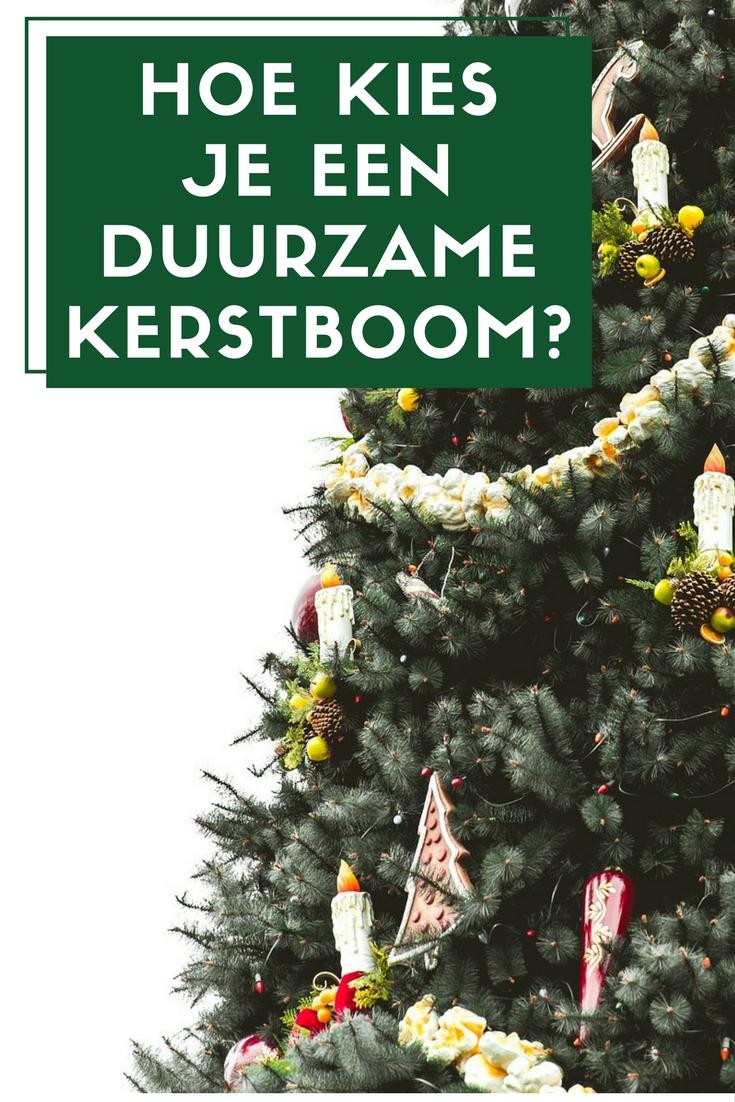 Een duurzame kerstboom kiezen
