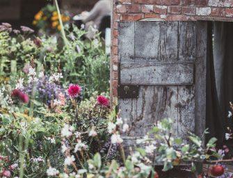 5 dingen die je nu al kunt doen ter voorbereiding op jouw duurzame droomhuis