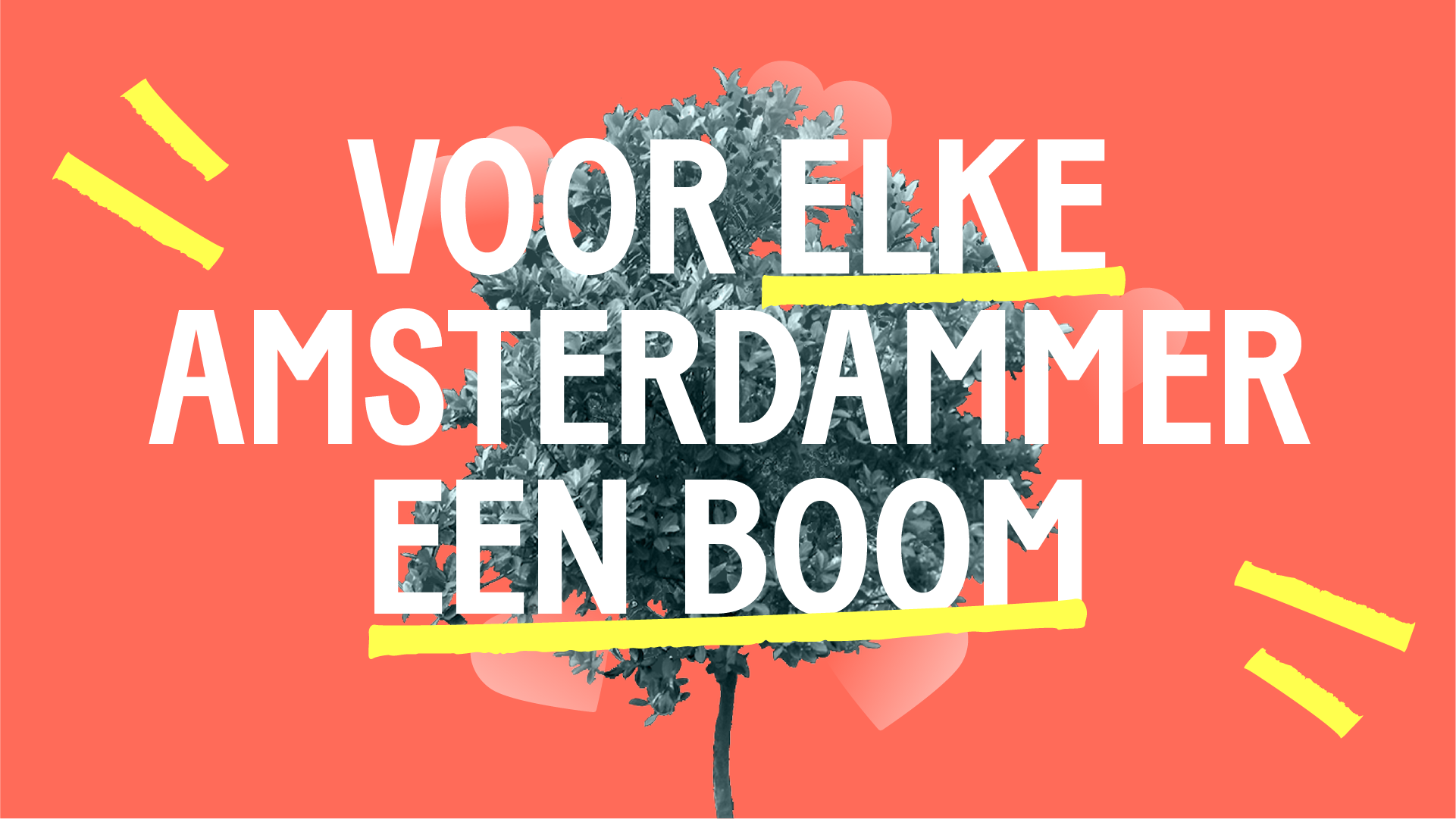 Bomen voor Amsterdam