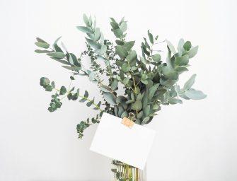 10 unieke ervaringen om cadeau te doen