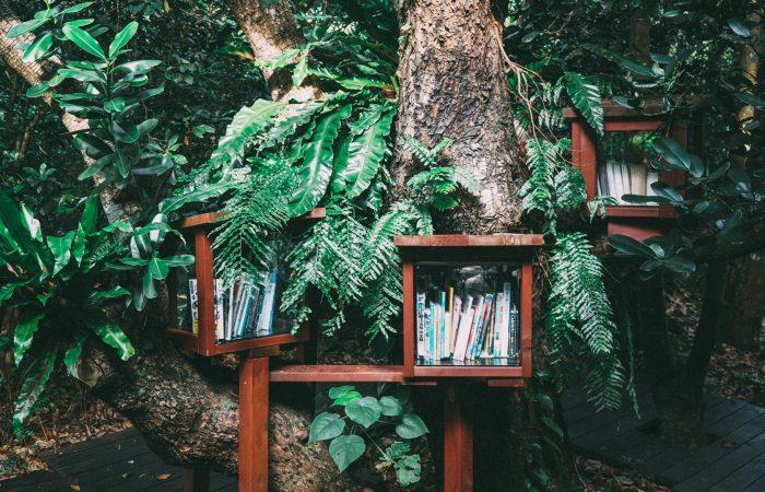 5 originele manieren om iemand anders blij te maken met jouw oude boeken