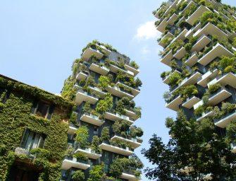 De vele voordelen van groen in de stad