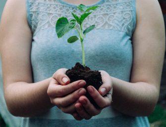 150 tips voor een duurzamer leven