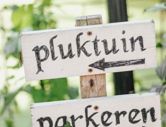 De leukste pluktuinen in Friesland