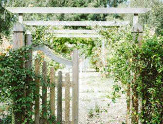 5 tips voor een tuin voor alle seizoenen